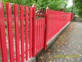 Малиновый штакетный забор_13