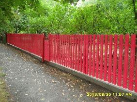 Малиновый штакетный забор_6
