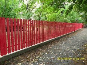 Малиновый штакетный забор_9