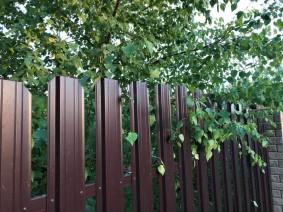 Штакет арка одностороннее заполнение коричневый цвет