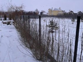 Забор под ключ, с. Рудыки_2