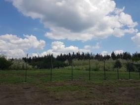 Секционный забор сварной в порошковом покрытии